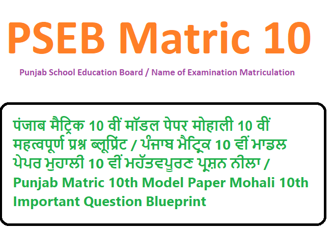 Punjab Matric 10th Model Paper
